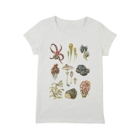 1tshirt-mushrooms